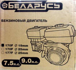 Двигатель бензиновый Беларусь 170F 7,5 л.с. (1)